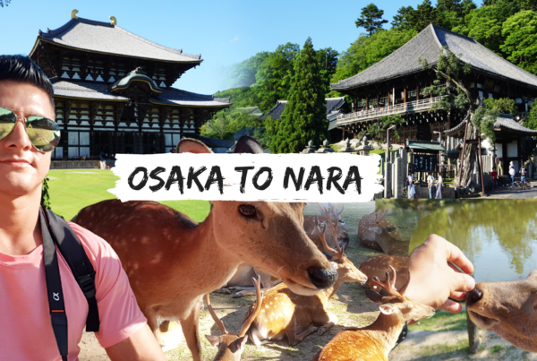 Osaka to Nara