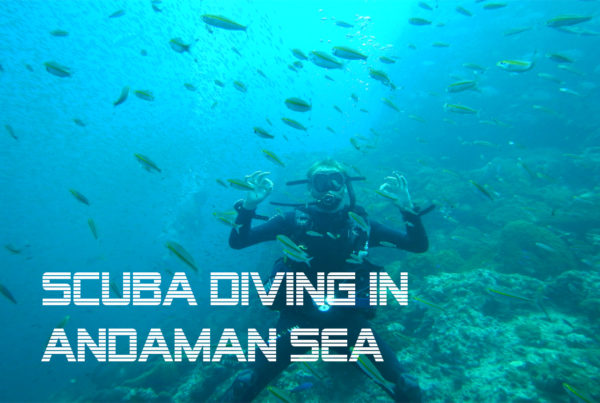 scuba diving in andaman sea blog