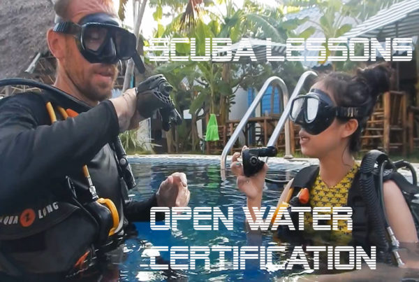 scuba lessons padi open water certification