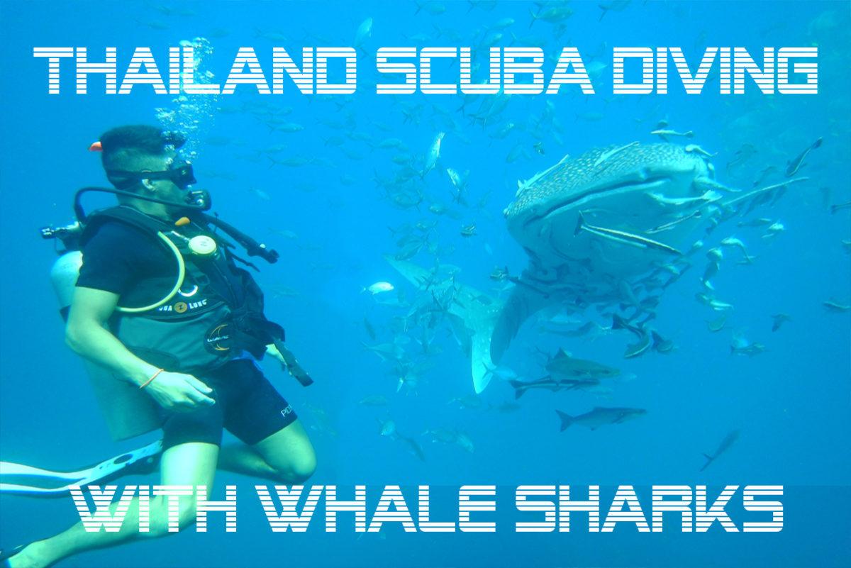 scuba diving in andaman sea, Scuba Diving in Andaman Sea