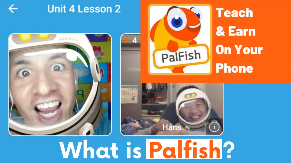 What is Palfish?