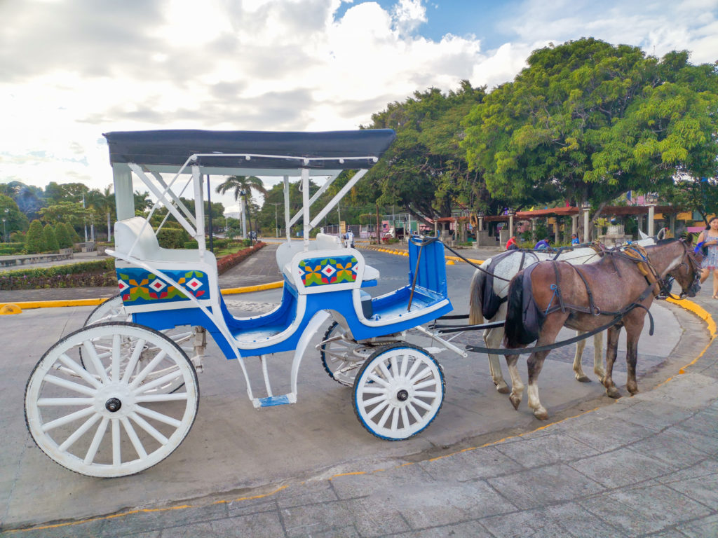 horse carriage in nica