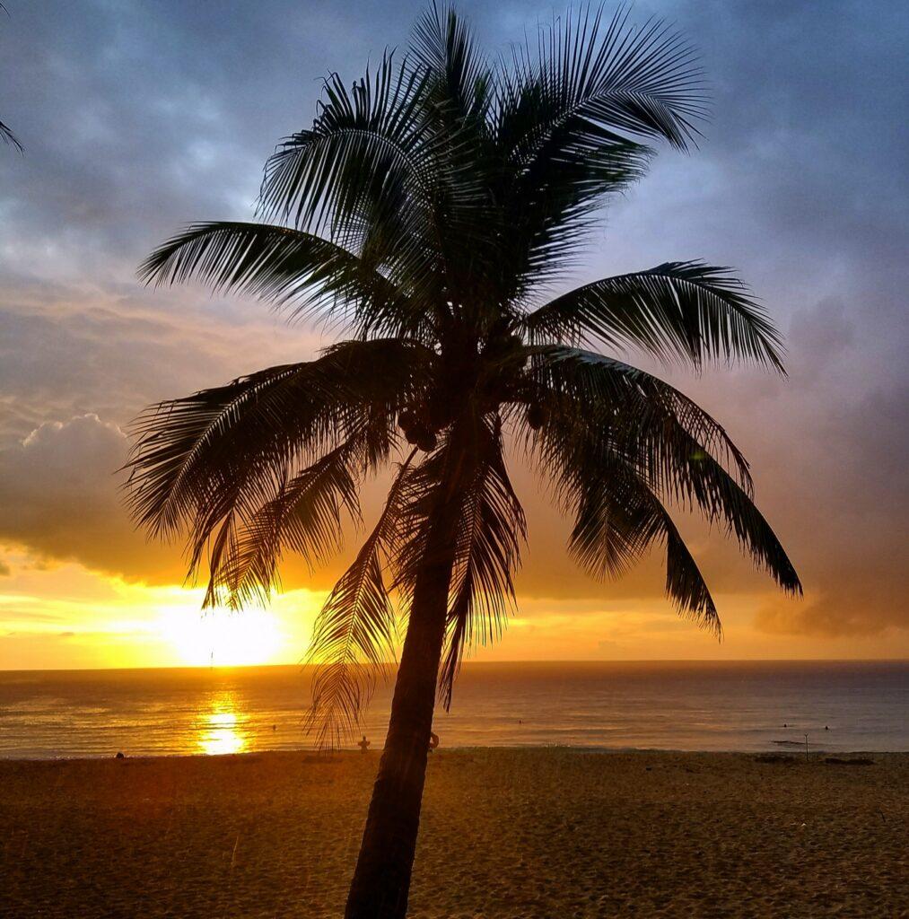 surin beach phuket nomadicnava 1